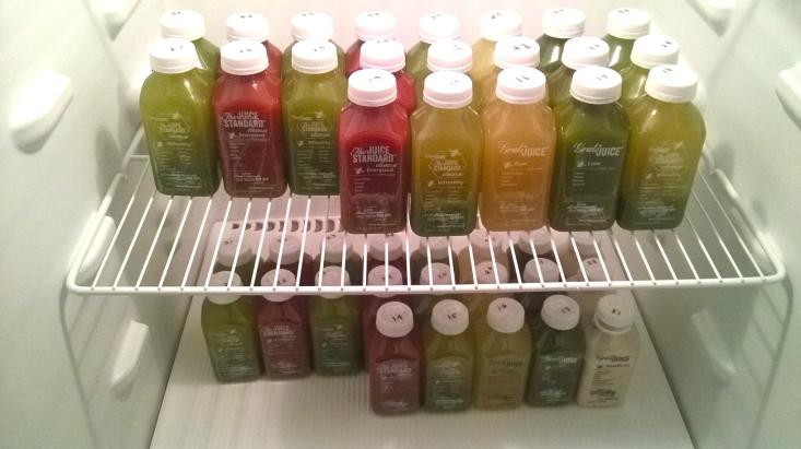 TJS fridge 2