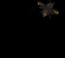 TJS logo